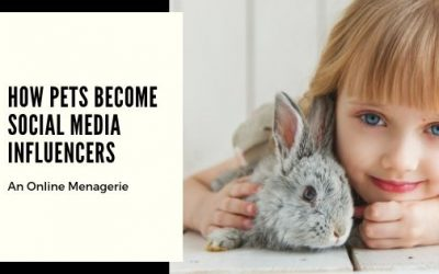 An Online Menagerie: How Pets Become Social Media Influencers